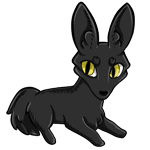 Zorvic plush styled to look like a black cat with yellow eyes.