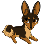 Tan base with dark brown husky and cream belly. It has pointed ears and a curly tail.