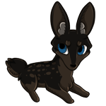 Brown deer zorvic with dark brown base and black husky. Also has brown deer spots and striking blue eyes.