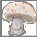 White Cap Shroom