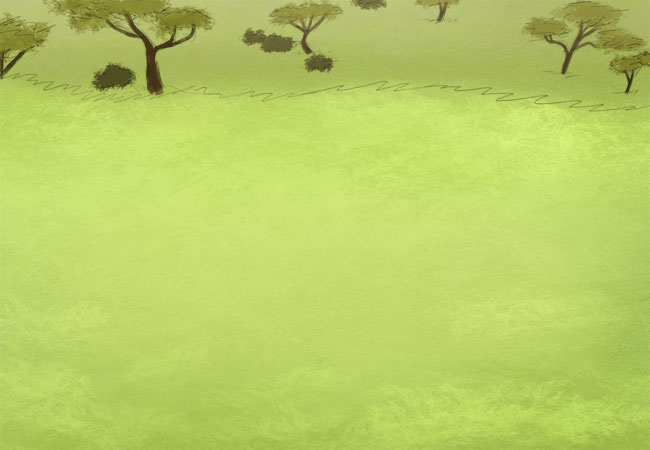Small view of the Grassy Savanna.