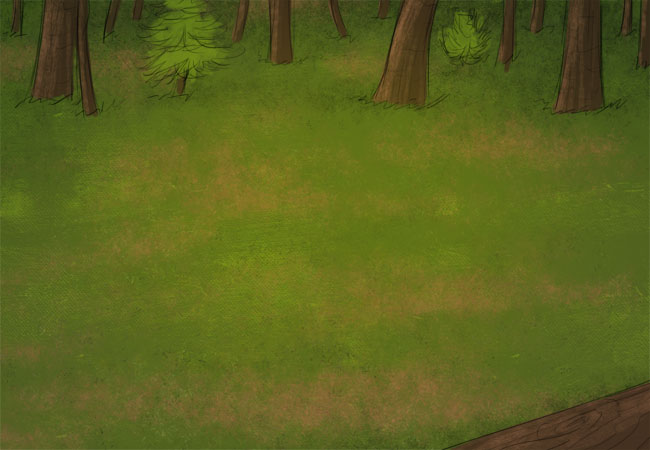 Small view of the Pine Forest.