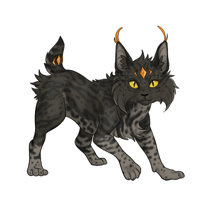 A sneak peek at a wild looking Nyrin, dark with black ocelot marking.