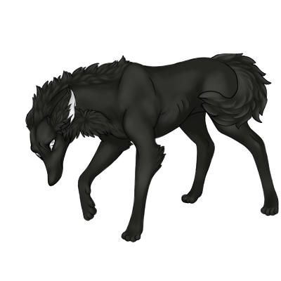 Dark charcoal colored sad preat with large ears backwards and fluffy tail tucked under it's leg.
