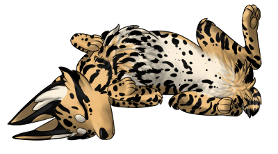 Sleeping Zorvic with natural ocelot coloring. Tan, cream belly, and black ocelot.