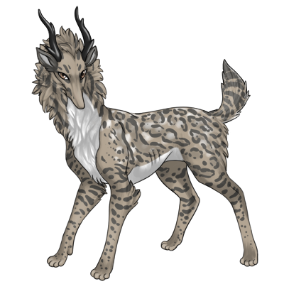 Gray tan preat with medium ocelot, white belly, and white deer spots.